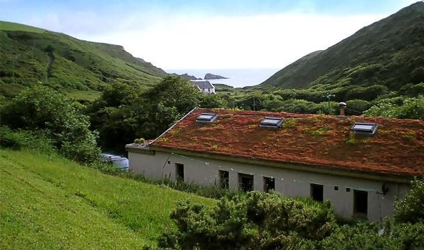Green Roof Benefits | Green Roofs