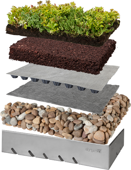 Green Roof Layers Amp Large Preview Of 3d Model Of Green