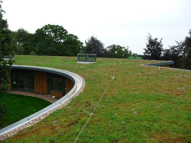 Sedum Blanket Roof System At British Horse Society Sky