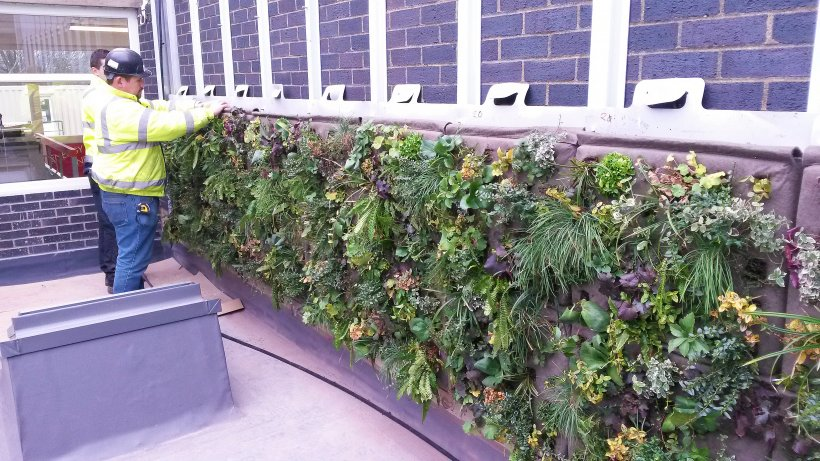 Colas Rail Green Wall, Rugby