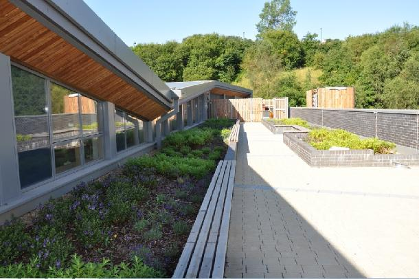 Ebbw Vale Intensive Green Roof