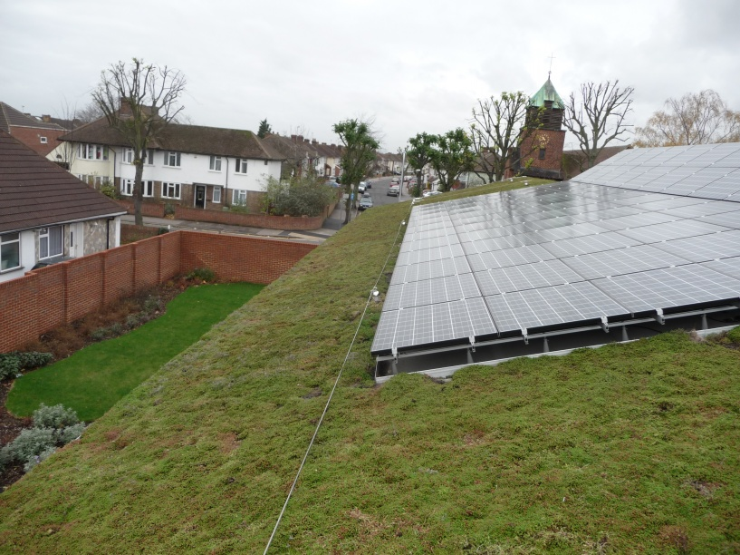Green Roofs and Solar Panels