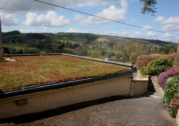 Green roofs as ecosystems
